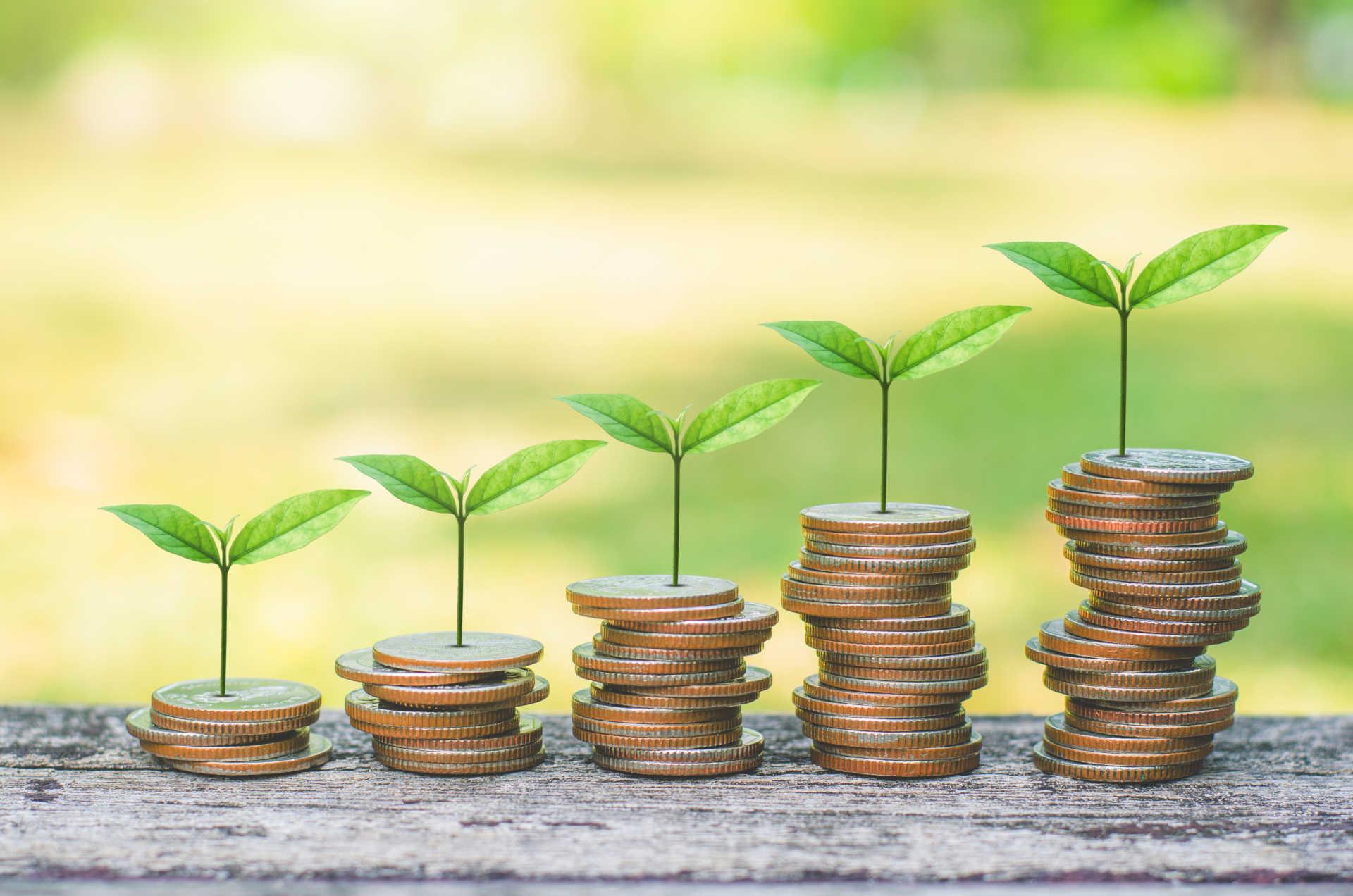Critérios ESG se consolida como prioridade nas empresas